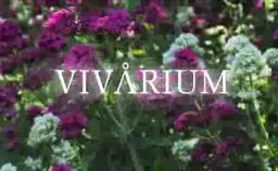 Vivarium banner button - Click to help make this movie!