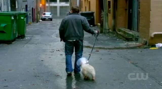 Supernatural S7x15 - Jeffrey and his new dog check out noise in the alley