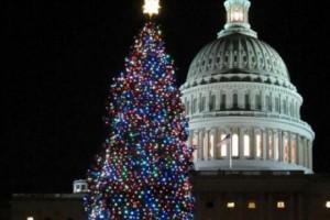 Merry Christmas, Happy Hanukkah, Happy Kwanzaa, and a Happy New Year!