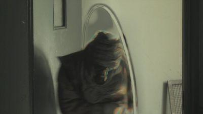 Wormhole or static warp bubble teleportation