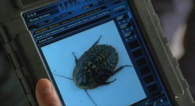 Fringe-S3x13-Alt The bugs get bigger