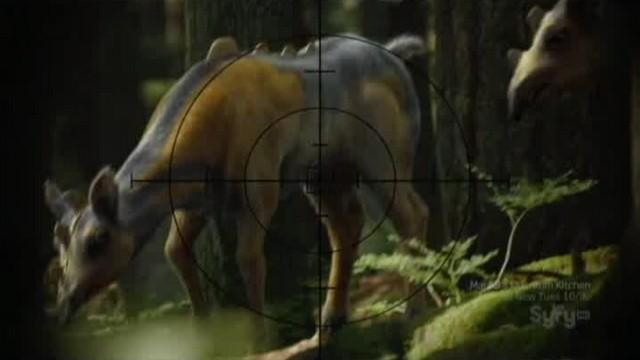SGU S2xE16 The Hunt - Alien meat