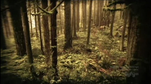 SGU S2xE16 The Hunt - View from camp