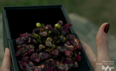 Haven S4x09 - Audrey holds the box and sees the flowers morph into The Troubled Bugs