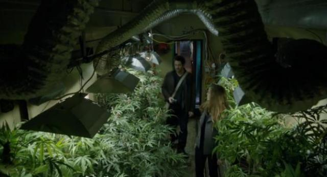 Primeval New World 01x04 Lots of pot