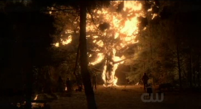 The Vampire Diaries S3x08 - Burning of the White Oak Tree