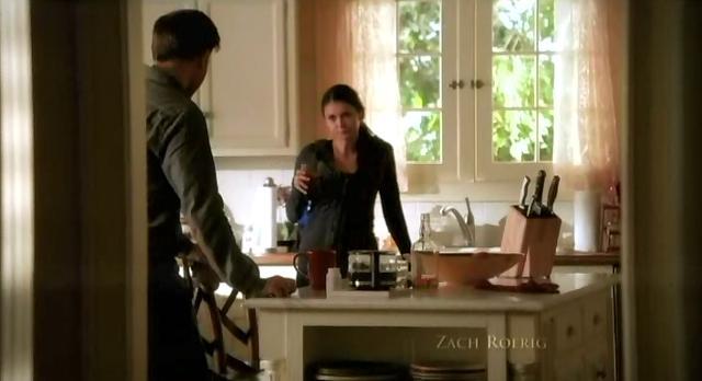 The Vampire Diaries S3x13 Elena and Alaric