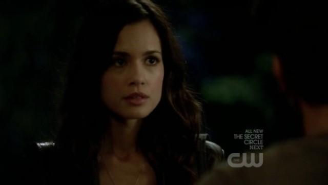 The Vampire Diaries 3x16 - Meredith Fell at Alaric's door