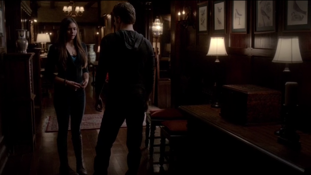 The Vampire Diaries S4x11 - Stefan and Elena
